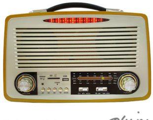 رادیو اسپیکری فوق پیشرفته با طراحی بسیار شیک و چوبی