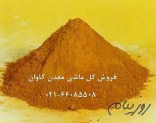 فروش گل ماشی (لیمونیت limonite )معدن کاوان-خرید گل ماشی معدن کاوان