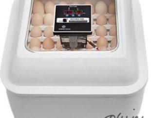 فروش ویژه دستگاه جوجه کشی خانگی بهینه