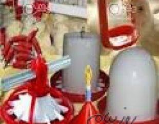 فروش آبخوری و دان خوری مخصوص بوقلمون شرکت زرین توتک