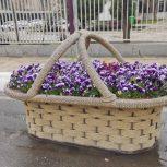 گلدان حصیری گرد و مستطیلی فایبرگلاس
